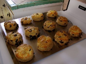 Cape Cod Cranberry Scones