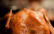 Golden Roast Turkey