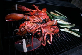 Grilled Lobster Dinner