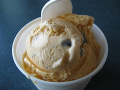 Orange Chocolate Chip Ice Cream