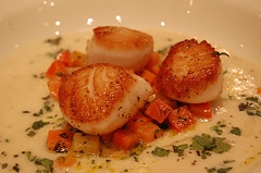 Sauteed Scallops