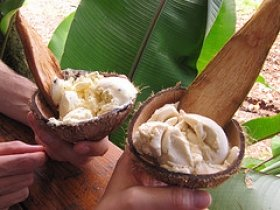 Banana And Coconut Milk Ice Cream