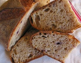 Basic White  Whole Wheat Bread