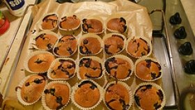 Blueberry Cupcakes  Muffins