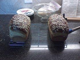 Oatmeal Honey Bread